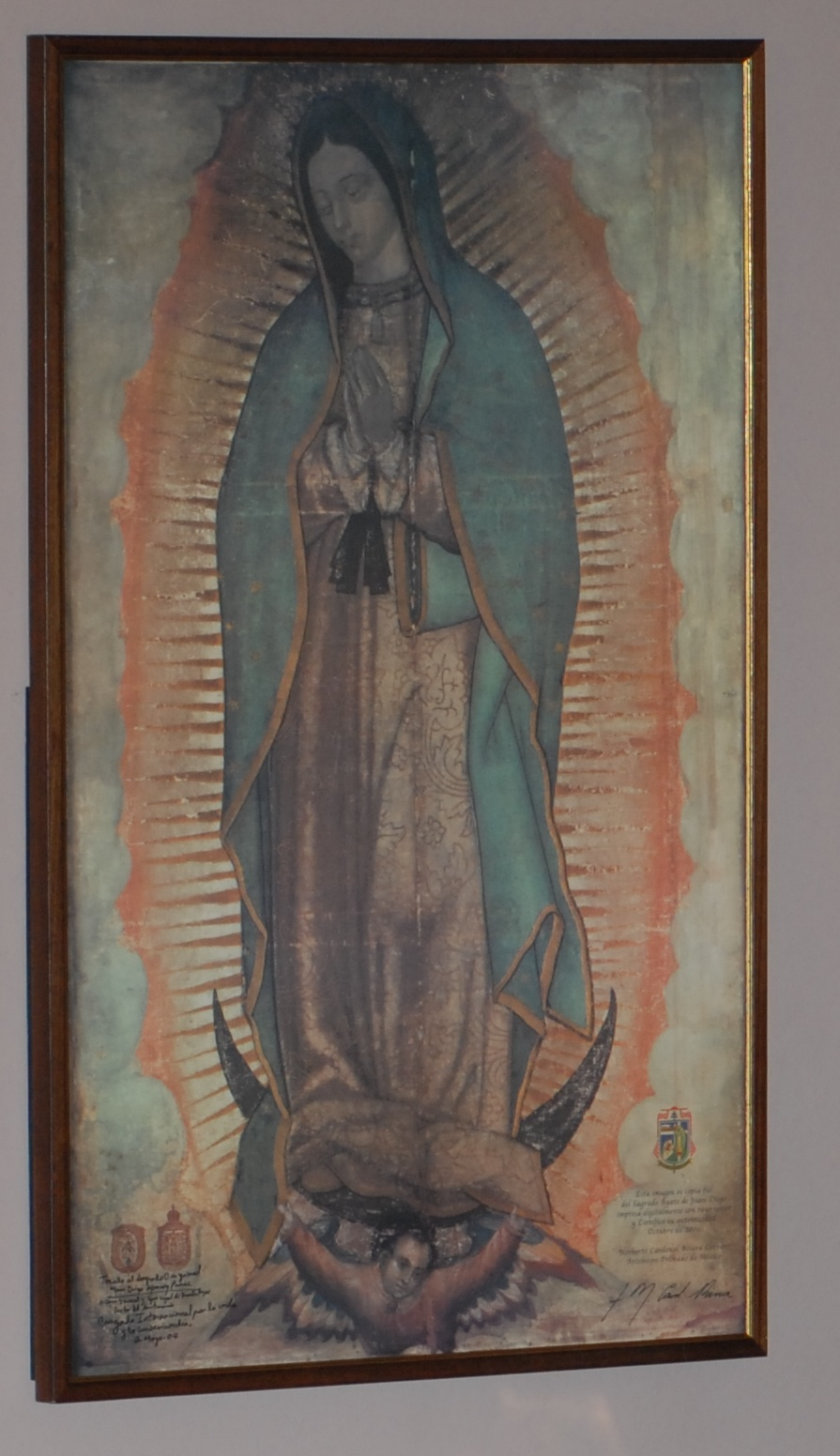 Gaudete and Guadalupe