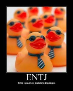Tapping into my ENTJ-ness - Snoring Scholar