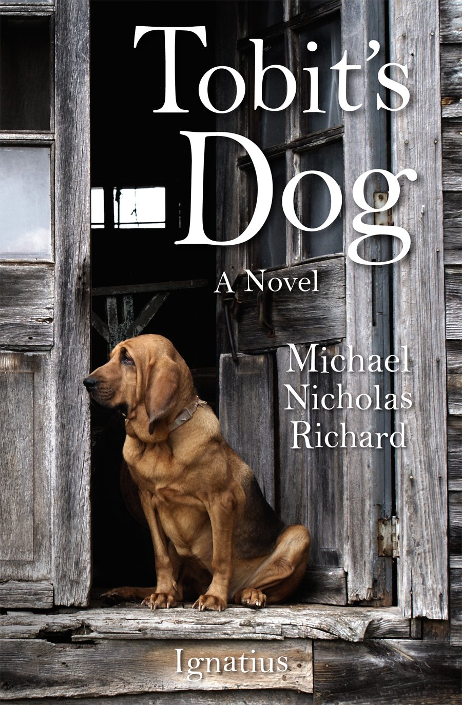 Summer Reading: Tobit's Dog