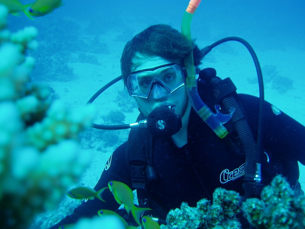 diving-666016_1280