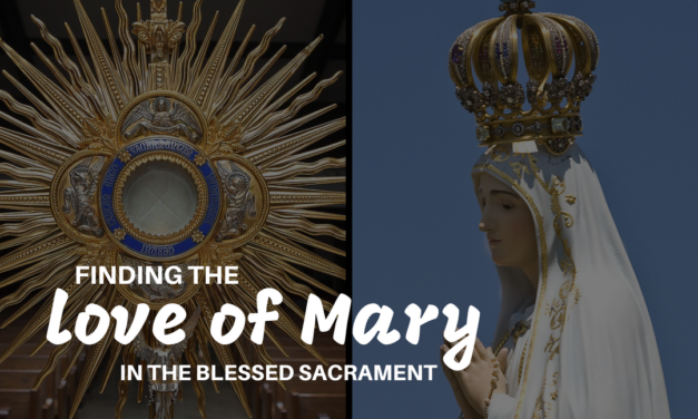 Finding the Love of Mary in the Blessed Sacrament
