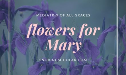 Flowers for Mary as Mediatrix of All Graces
