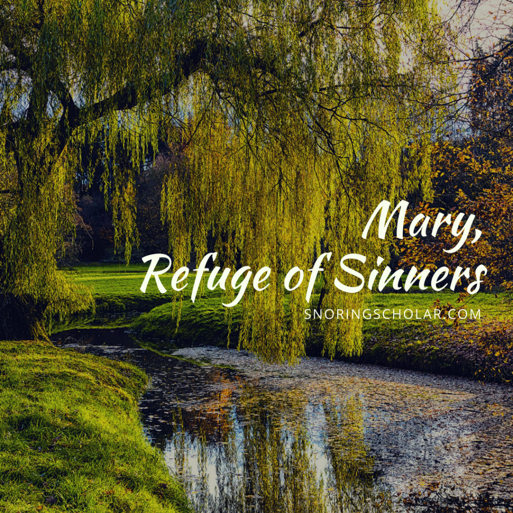 Mary, in her title as Refuge of Sinners, reminds me of a childhood hideout I had...and points me to the graces God has for me.