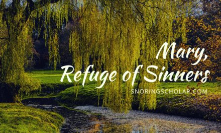 Mary, Refuge of Sinners