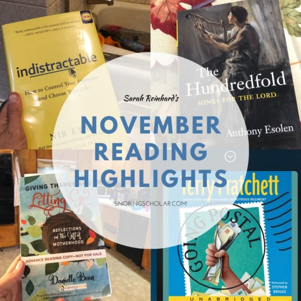 Best of November Reading by Sarah Reinhard SnoringScholar.com